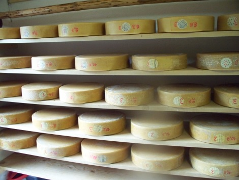 Cheese_Wheels_from_Bernese_Oberland,_Switzerland